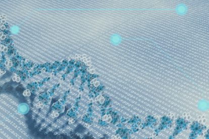 The Gender Bias of Genes - Are Females More Susceptible To Cancer?