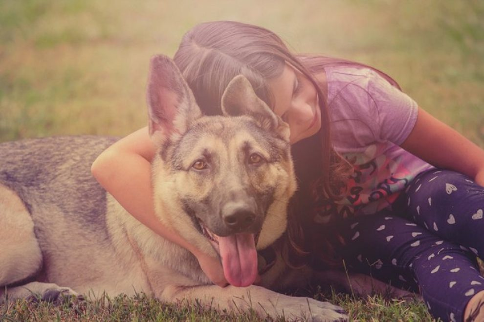 Can the Death of Your Pet Push You Into Depression?